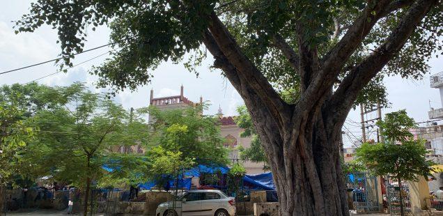 City Hangout - Masjid Udayan, Gurgaon